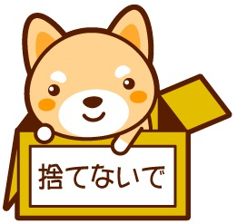 画像に alt 属性が指定されていません。ファイル名: 野良犬.jpg